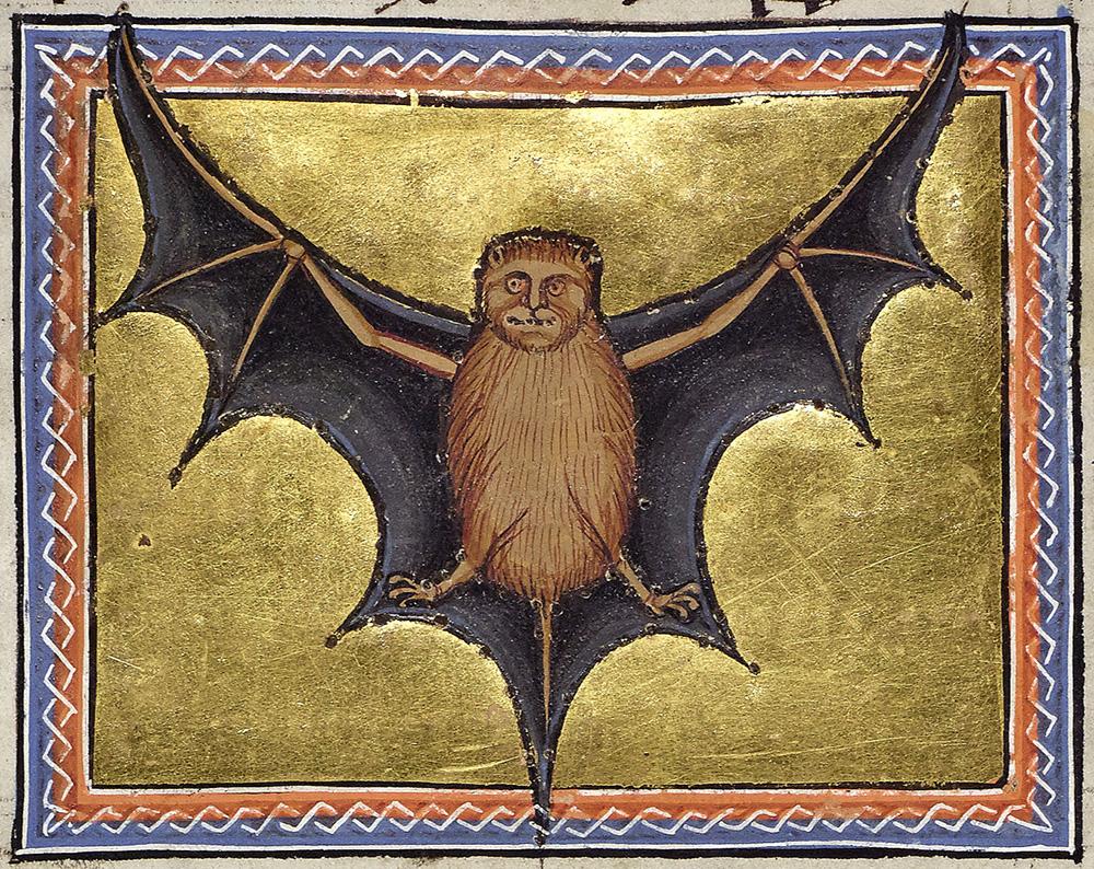 pipistrello dal bestiario di Aberdeen