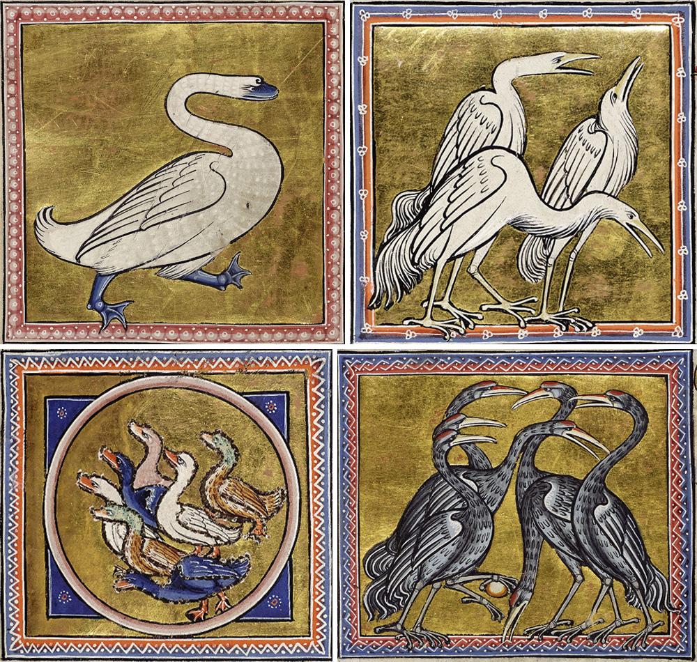 uccelli dal bestiario di Aberdeen
