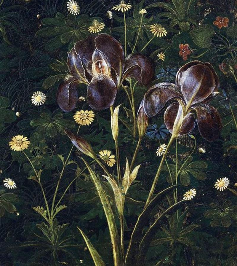 iris della Primavera di Botticelli