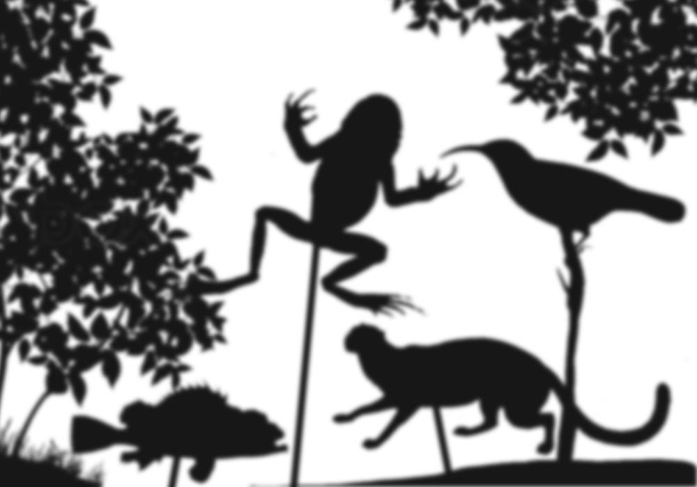 ombre cinesi con gli animali