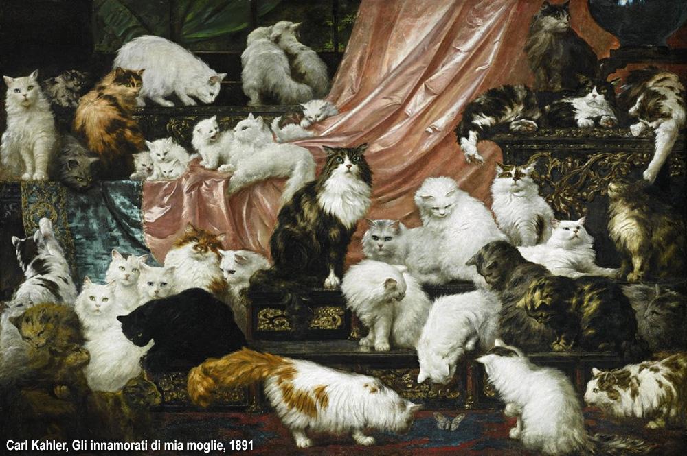 quarantadue gatti