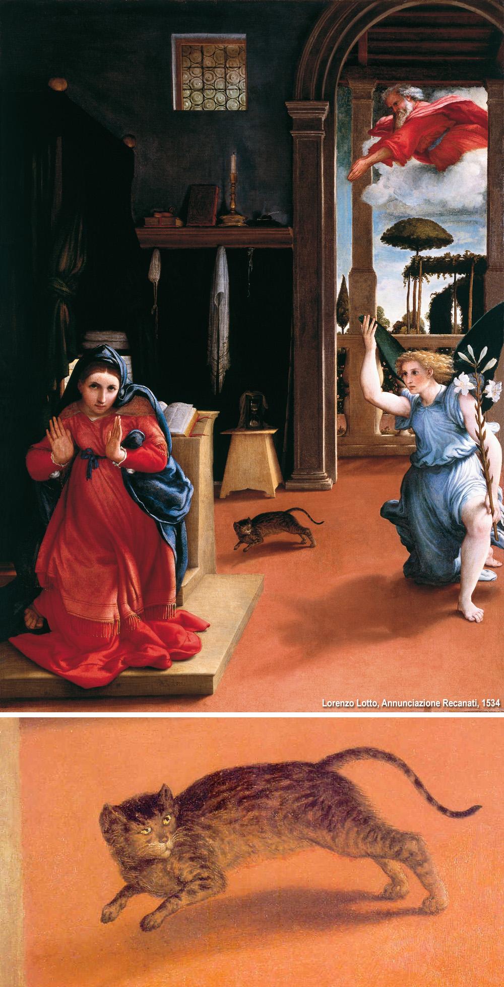 il gatto di Lorenzo Lotto