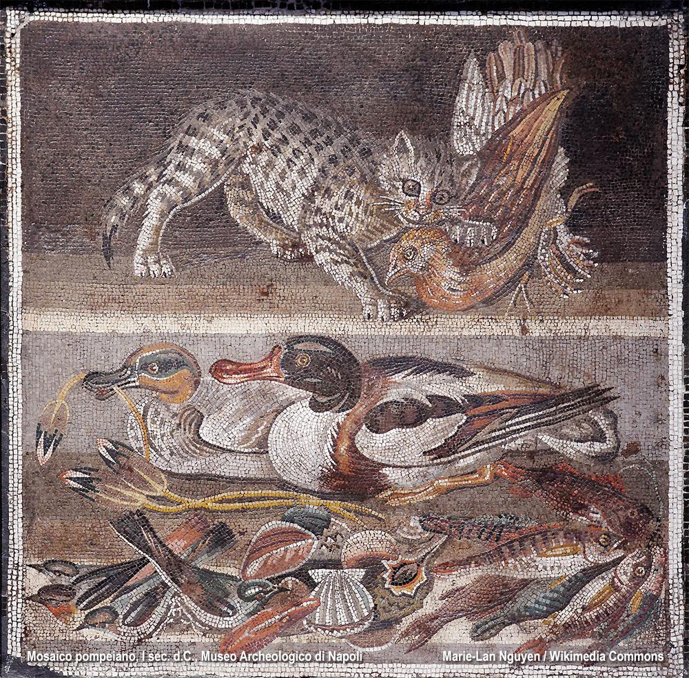 il gatto in un mosaico romano