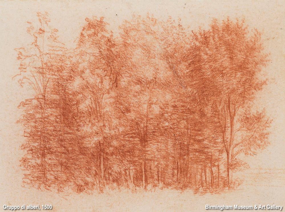 alberi di Leonardo