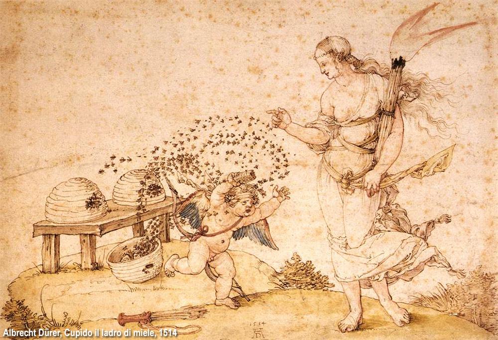 api e Cupido in Durer