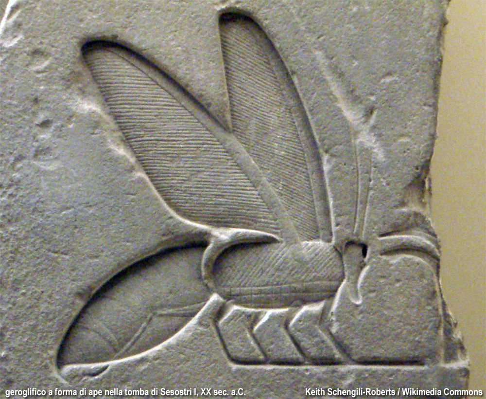 ape in un rilievo egizio
