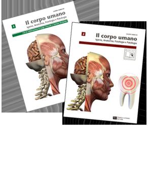 Sandro Barbone - Il corpo umano