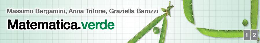 libro1 M. Bergamini, A. Trifone, G. Barozzi,  Matematica verde