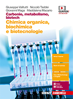 Carbonio, metabolismo, biotech