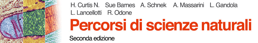 libro0 H. Curtis, S.N. Barnes, A. Schnek, A. Massarini, Percorsi di scienze naturali - Seconda edizione