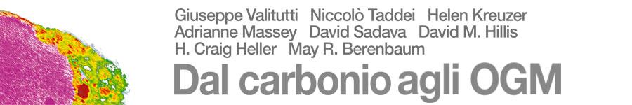 libro3 Valitutti, Taddei, Kreuzer, Massey, Sadava, Hillis, Heller, Berenbaum, Dal carbonio agli OGM