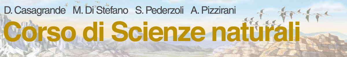 libro0 Daniele Casagrande, Marcella Di Stefano, Simona Pederzoli, Andrea Pizzirani, Corso di Scienze naturali
