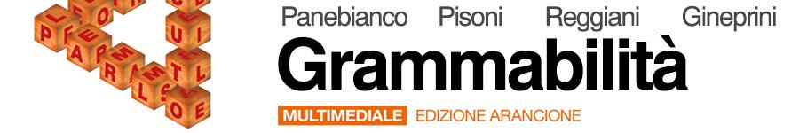 libro2 Beatrice Panebianco, Cecilia Pisoni, Loretta Reggiani, Mario Gineprini, Grammabilità