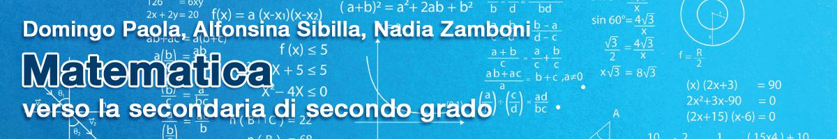 libro0 D. Paola, A. Sibilla, N. Zamboni, Matematica verso la secondaria di secondo grado