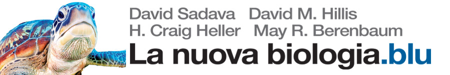 libro1 D. Sadava, D. M. Hillis, H. C. Heller, M. R. Berenbaum, La nuova biologia.blu