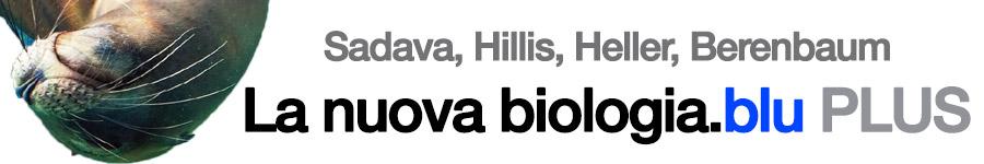 libro3 D. Sadava, D. M. Hillis, H. C. Heller, M. R. Berenbaum, La nuova biologia.blu